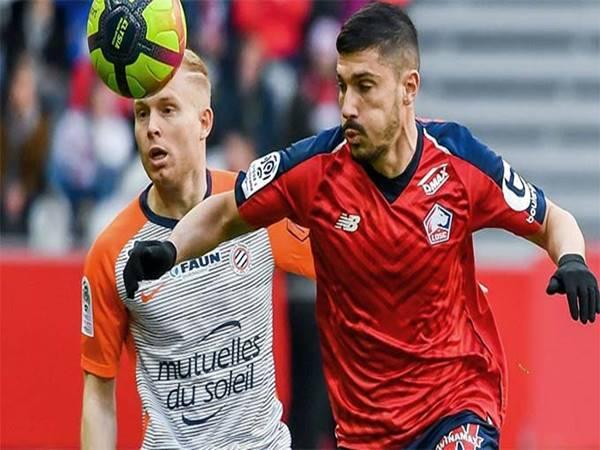 Nhận định bóng đá Lille vs Montpellier, 2h00 ngày 17/4